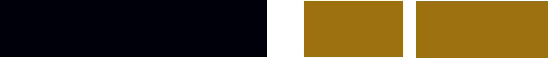 DemirAslan Logo